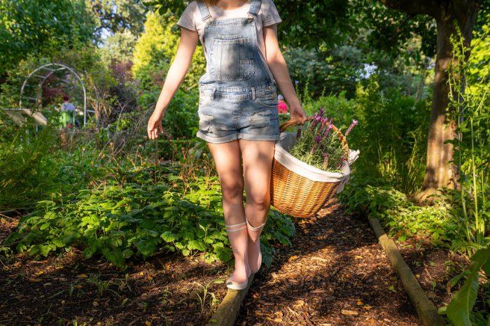 Gummistiefel im Frühling Aigle Lolly Pop Garten