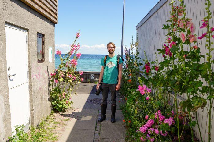 Dänemark Kopenhagen Deer Park Meer Blumen
